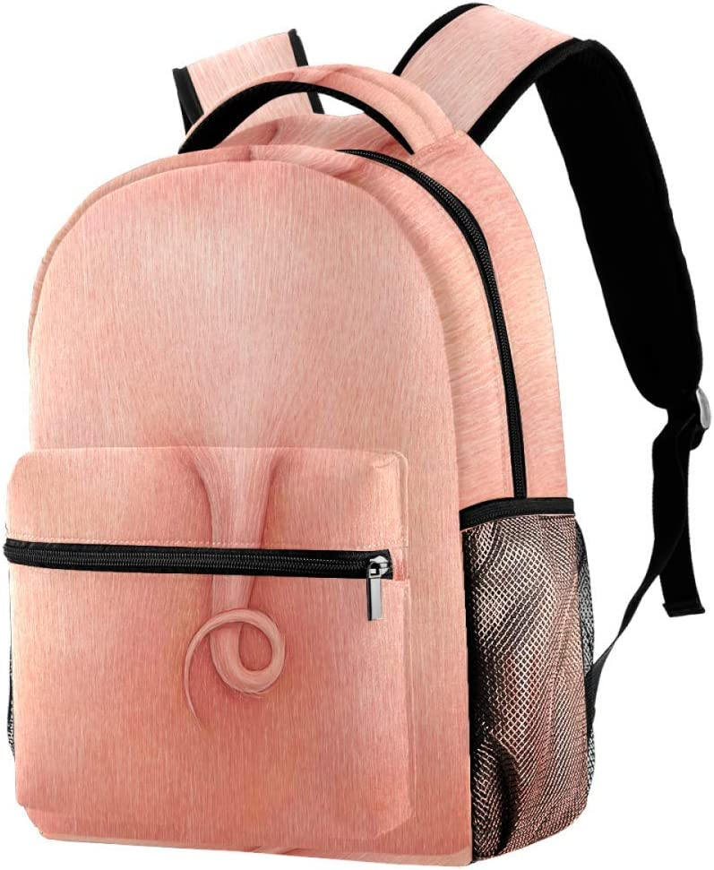 Fashion School Backpack Rucksack Girls Shoulder Book Bags Hiking Travel Camping