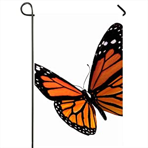 Onete Garden Flag 12x18 Inches Flap Stripes Isolate Insect Flutter Nature Wings Fly Isolated Butterfly Isolation 3D Beautiful Outdoor Seasonal Home Decor Welcome House Yard Banner Sign Flags