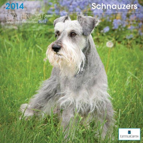 LittleGifts Schnauzer 2014 Calendar (7073)