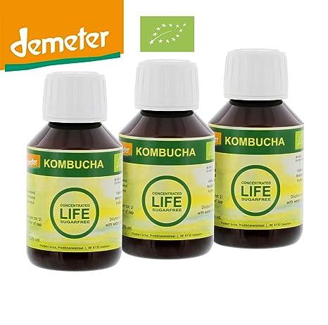 3 botellas de 100 ml Kombucha concentrada, Produce: 1 litro de kombucha o de
