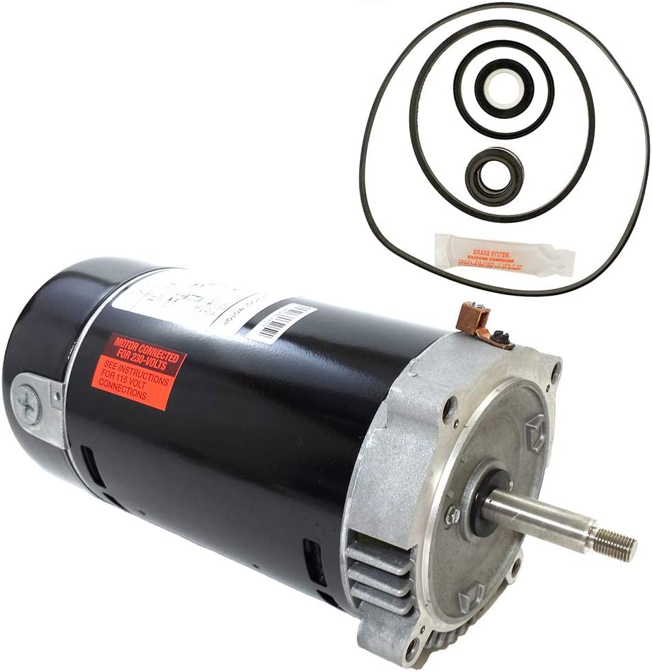 Puri Tech Replacement Motor Kit for Hayward Max-Flo 1HP SP2807X10 AO Smith UST1102 w/GO-KIT-1