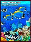 Queensland The Great Barrier Reef Fish Australia Australian Travel Advertisement Art Poster