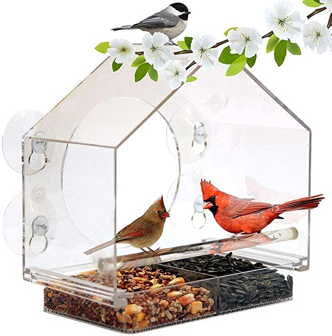 ZKZKK Alimentador de pájaros de acrílico Transparente con lechones Aves de jaulas for la decoración del jardín Árbol (Color : Transparent)