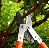 THANOS Pruning Loppers,Tree Pruner,with SK-5 High