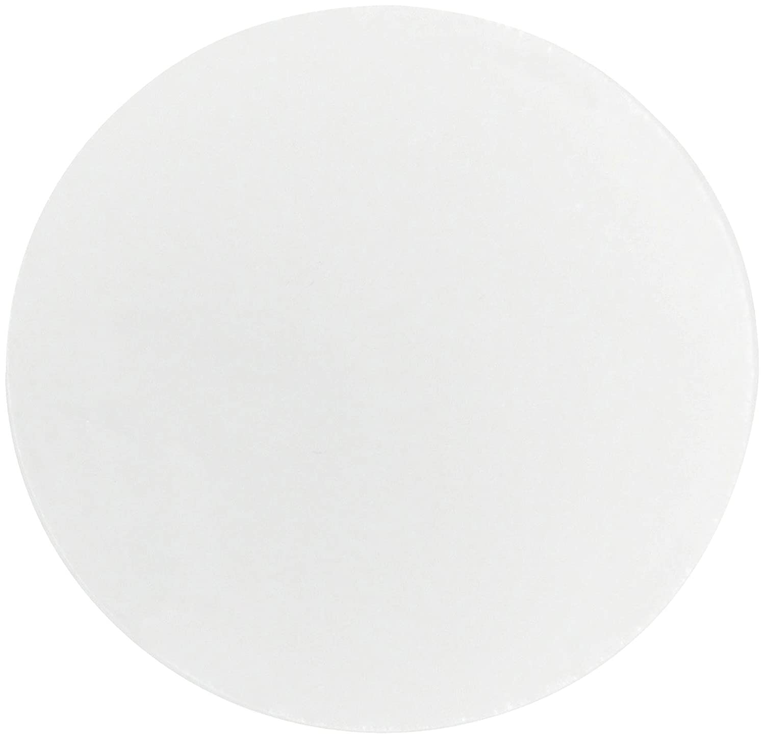 Whatman 111115 Polycarbonate Nuclepore Track Etched Membrane Filter 47mm Diameter 10.0 Micron Pack of 100