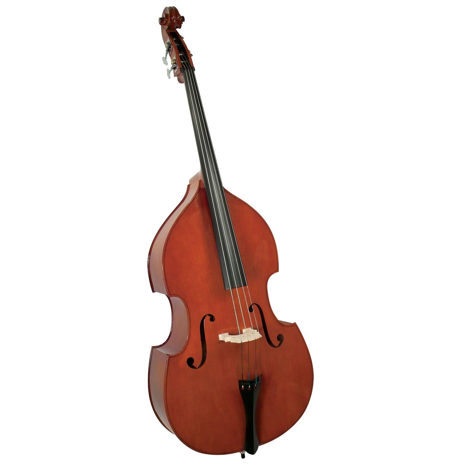 Cervini HB-100 Beginner Bass Outfit - 1/2 Size by Cervini