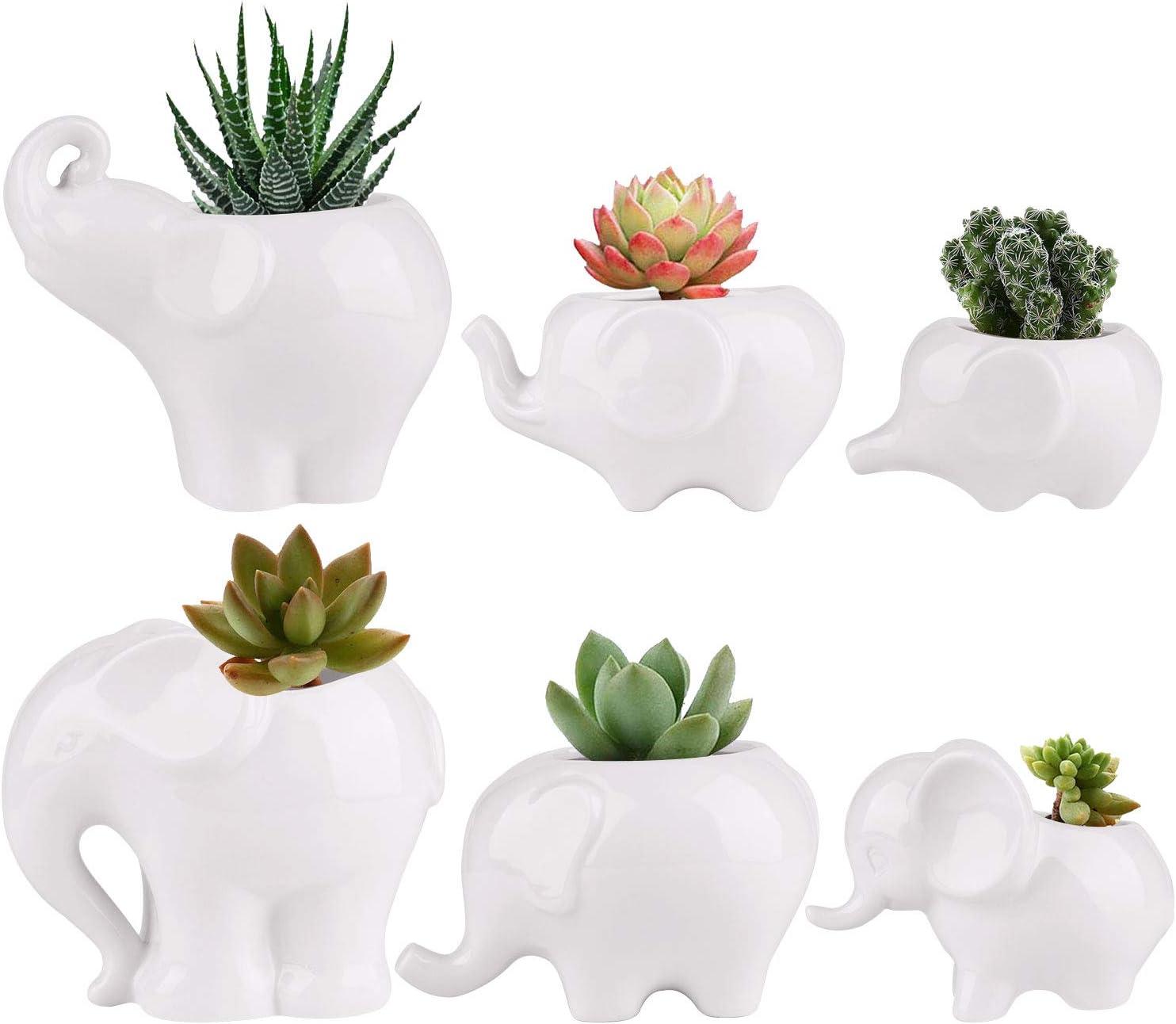 Succluent Pots ,Small Flower Pots Planter Pots with Drinage,Ceramic Cute Animal Mini Elephant Flowers Pots Planter for Cactus(6 Pack)