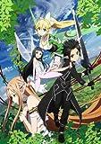Animation - Sword Art Online 9 [Japan DVD] ANSB-6617