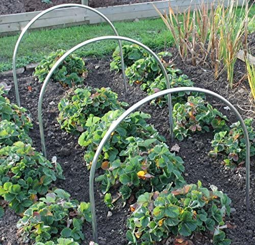 Aros de aluminio de 19 mm para huerto y jardín de alta calidad - Gran altura: Amazon.es: Jardín