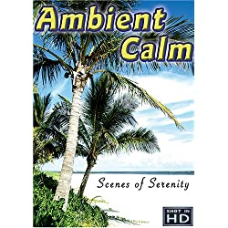 Ambient Calm: 14 Serene Scenes of Relaxation, Wellness, and Stress Relief