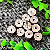 Dophee 10Pcs 240 Grit Flap Sanding Wheel Head