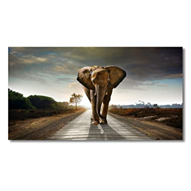 Wall Art Elephant Animal Paintings Canvas Wall Art Print Paintings Modern Giclee Artwork for Wall Decor and Home Decor Stretched and Framed Ready to Hang,2cm Thick Frame, Waterproof Artwork.