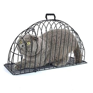 Cacoffay Jaula de baño para Gatos de 2 Puertas Jaula de Mascotas ...