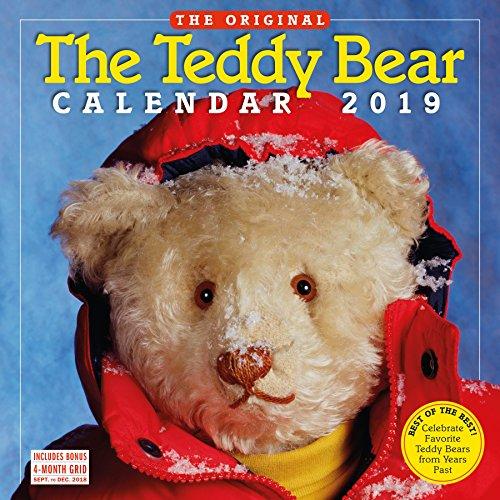 Teddy Bear Calendar Wall Calendar 2019 [12