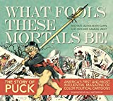 img - for Puck: What Fools These Mortals Be book / textbook / text book