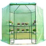 Walk in Portable Greenhouse 7.5' Outdoor Gardening Plant with ebook