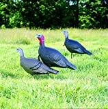 Flambeau Turkey Love Triangle Set Decoy