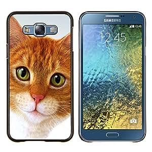 LECELL--Funda protectora / Cubierta / Piel For Samsung Galaxy E7 E700 -- Cymric Gato American Shorthair --