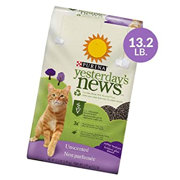 Purina Yesterdays News Arena para gatos de papel sin ...