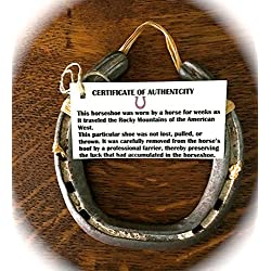 LUCKY HORSESHOE To Protect and Attract Good Fortune into your Home or Business-Hang Above or Beside Front Door-Comes With Certificate of Authenticity-Genuine Used Horseshoe-Talisman-Housewarming Gift