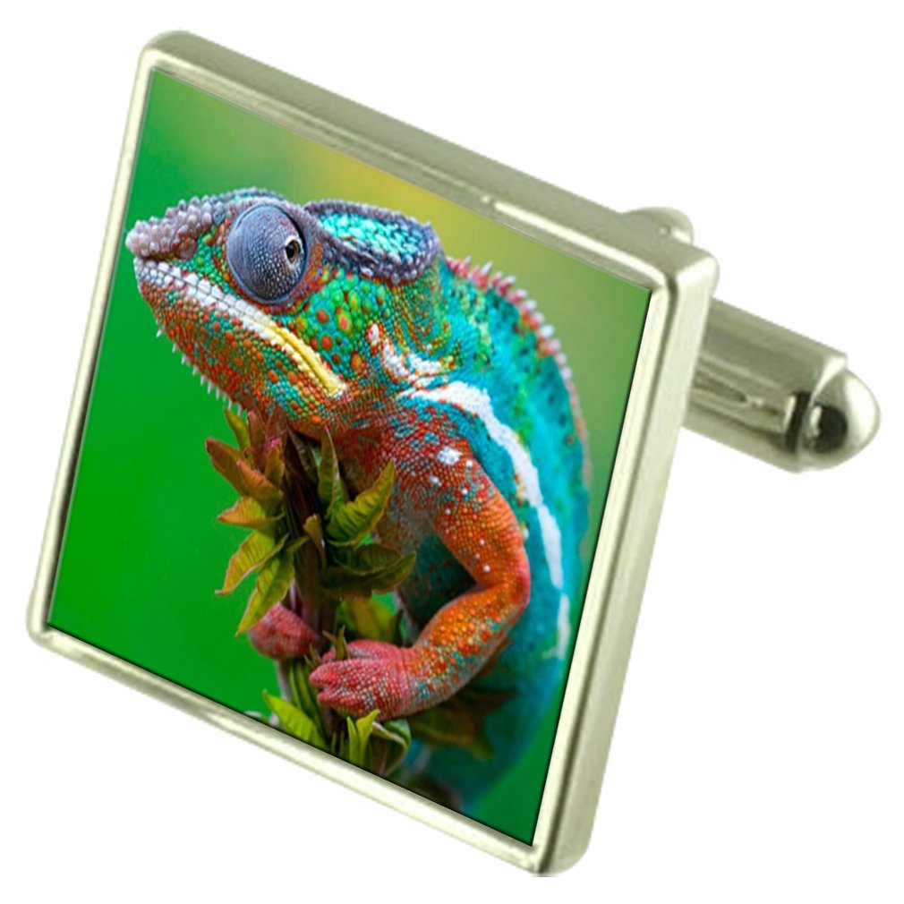 Select Gifts Iguana Engraved Keepsake Message Box