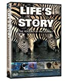 Life's Story 2: The Reason For The Journey