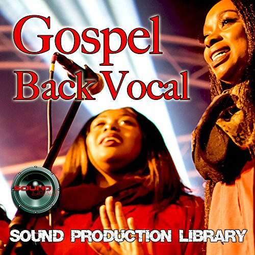 Hip-Hop Back Vocal - Large unique 24bit WAVE/KONTAKT Multi-Layer Studio Samples Production Library on DVD or download by SoundLoad (Image #1)