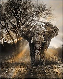 Oce180anYLV Kit de Broderie au Point de Croix Motif éléphant et forêt Z173
