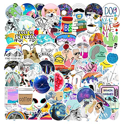 Funny Meme Stickers| 100 PCS |Stickers for Adults, Aesthetic,Skateboard,Vinyl Waterproof Stickers for Laptop,Water Bottles,Computer,Phone, (Meme 100Pcs)
