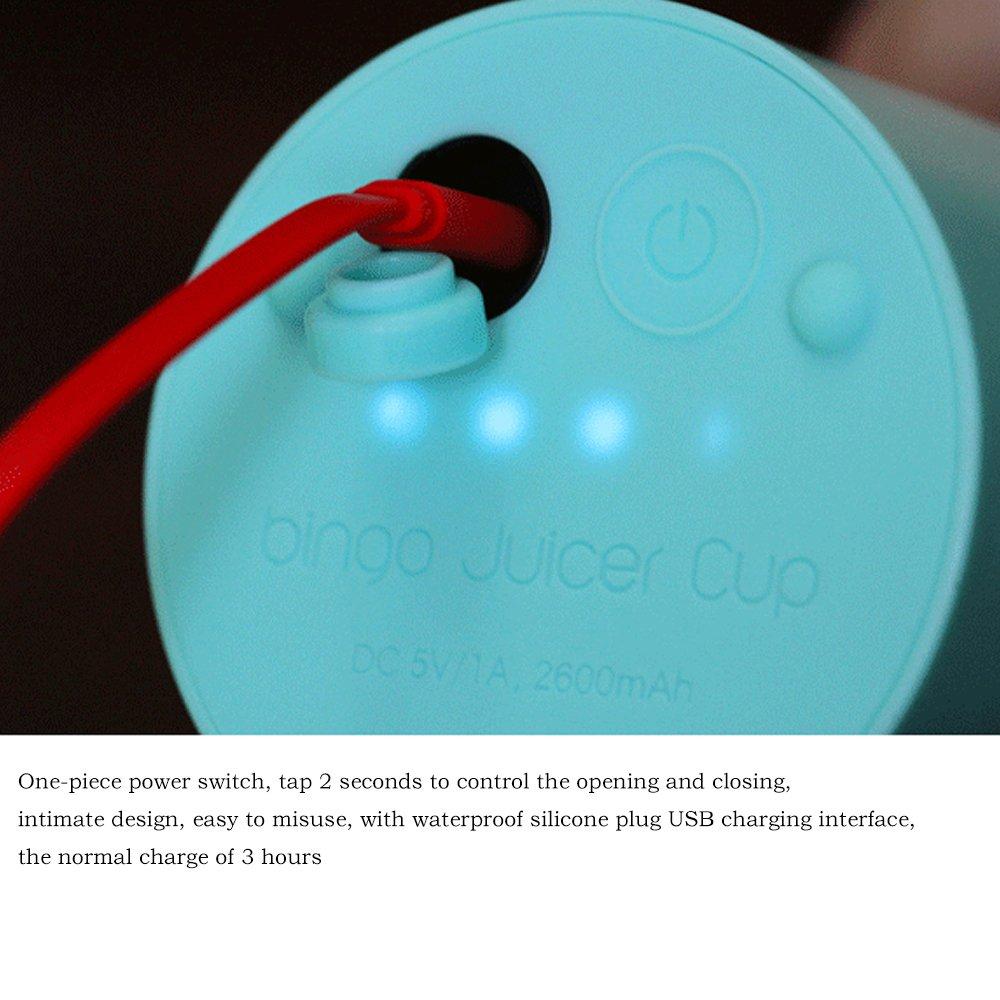 Gano Zen Portable Juicer Cup - USB Rechargeable Electric - Automatic Vegetables Fruit Juice Blender Mixer Maker Bottle Cup - 500ml by Gano Zen (Image #1)