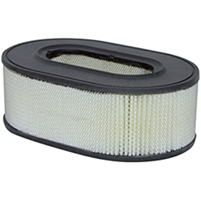 Luber-finer LAF8089 Heavy Duty Air Filter: Automotive