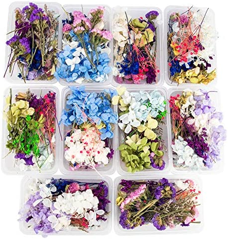 2 Box Mixed Dried Flowers specimen Plants Aromatherapy Candle Making DIY US