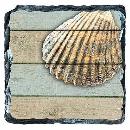 Cardita Seahell 6