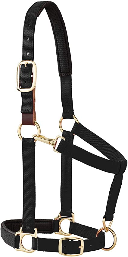 Color:Tan Size:Weanling//Pony Weaver Leather Inc. Weaver Breakaway Halter Replacement Crown