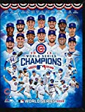 Chicago Cubs 2016 World Series Champs plaques