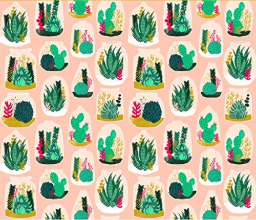 cactus-fabric-terrarium-sweet-little-houseplants-plants-cactus-indoor-pastel-pink-succulents-custom-