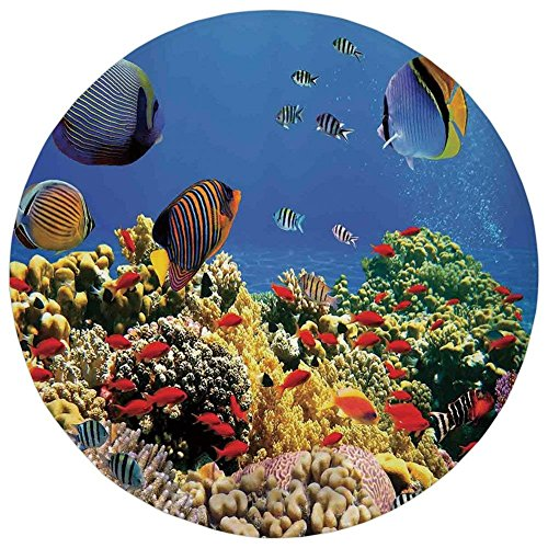 K0k2t0 Round Rug Mat Carpet,Ocean,Submerged Colorful Coral Colony on Reef Exotic Fishes Tranquil Shallow Sea Picture,Multicolor,Flannel Microfiber Non-Slip Soft Absorbent,for Kitchen Floor Bathroom -