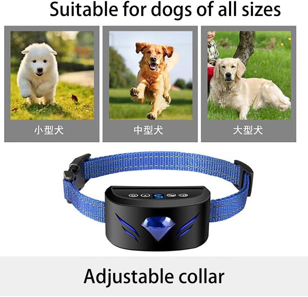Smart Chip Einstellbare Vibrationsfreie Bark Collar Hunde Anti-Barking Ger/äte,Blau effiziente Vibration und Ton aufh/ören zu bellen schnell ohne Schmerz