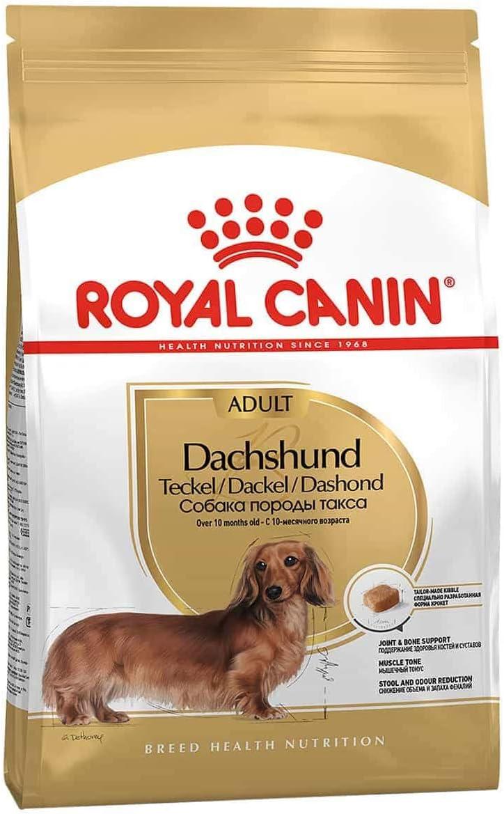 Royal Canin Alimento seco para perros salchicha para adultos, 1,5 kg