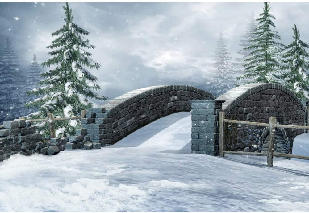 Snow Scenery Backdrop 5x3ft Stone Bridge Polyester Photography Background Snowscape Snowflake Green Pine Fir Tree Wooden Fence Countryside Holiday Trip Christmas New Year Photo Prop Video