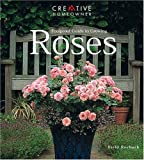 Foolproof Guide to Growing Roses