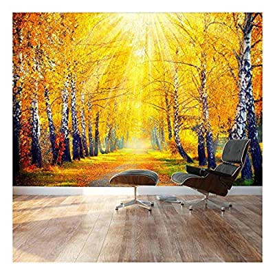 Sunny Autumn Day Trees line a Path - Landscape - Wall Mural, Removable Sticker, Home Decor - 66x96 inches