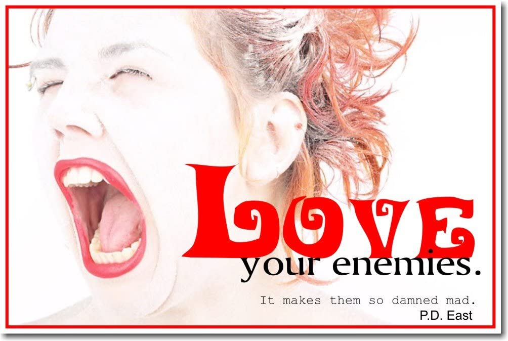 POSTER it makes them so damn mad Love your enemies