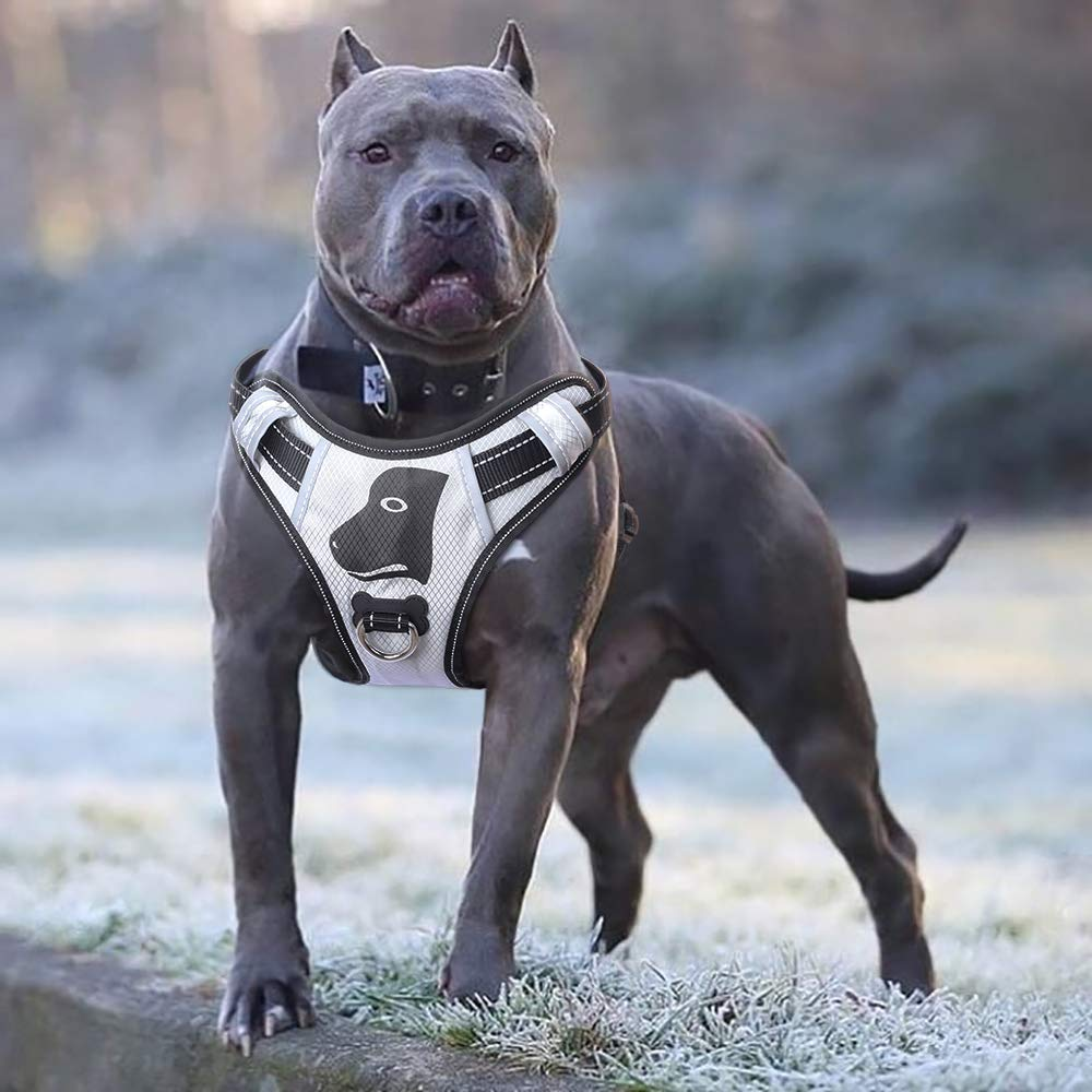 Babyltrl Silver Big Dog Harness No-Pull Anti-Tear Adjustable Pet Harness Reflective Oxford Material Soft Vest for Large Dogs Easy Control Harness (Large, Silver) by Babyltrl