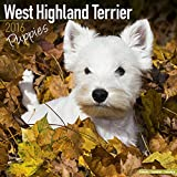 West Highland Terrier Puppies Calendar - Breed Specific West Highland Terrier Puppies Calendar - 2016 Wall calendars - Dog Calendars - Monthly Wall Calendar by Avonside