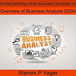Understanding What Business Analysts Do