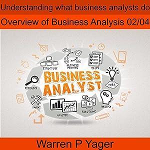 Understanding What Business Analysts Do Audiobook