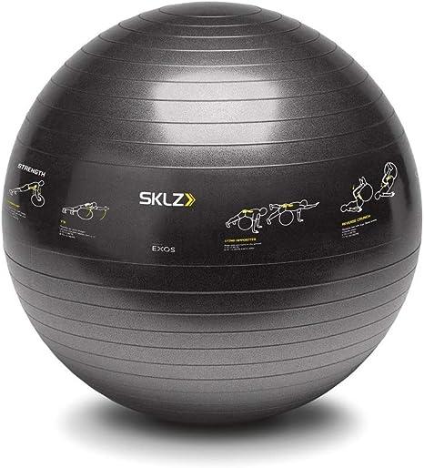 SKLZ Trainerball Sport Performance - Pelota fitness con ejercicios ...