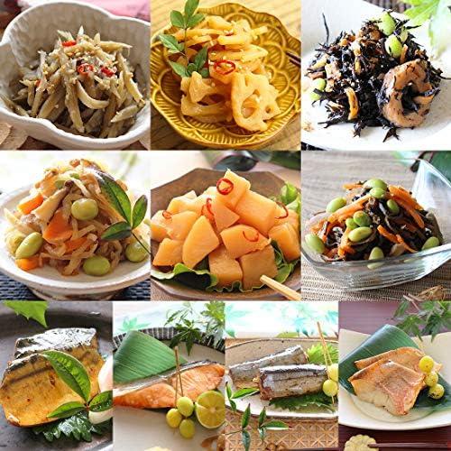 お惣菜おかわり お肉無し 野菜と魚の惣菜セット 惣菜 冷凍食品 おかず 煮物 魚 10パック (10種類×1パック)