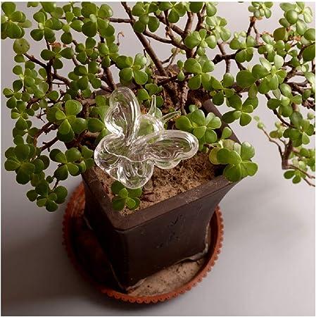 MOVEmen - Grifo de riego de Mariposas para regar Plantas de jardín, Sistema de riego automático, para Interiores y Exteriores, para Plantas domésticas de Interior o Exterior: Amazon.es: Hogar